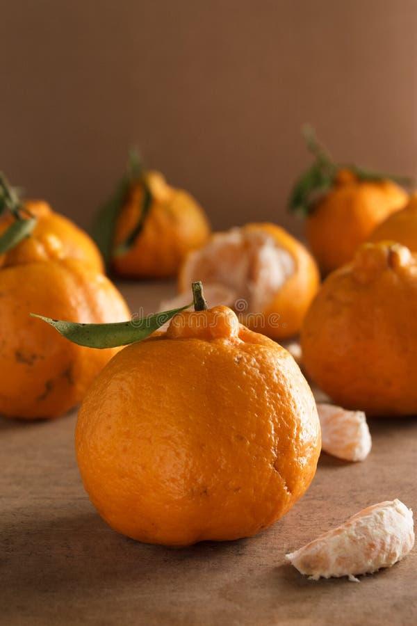 Fresh tangerines scientific nomenclature: Citrus tangerina. royalty free stock photography