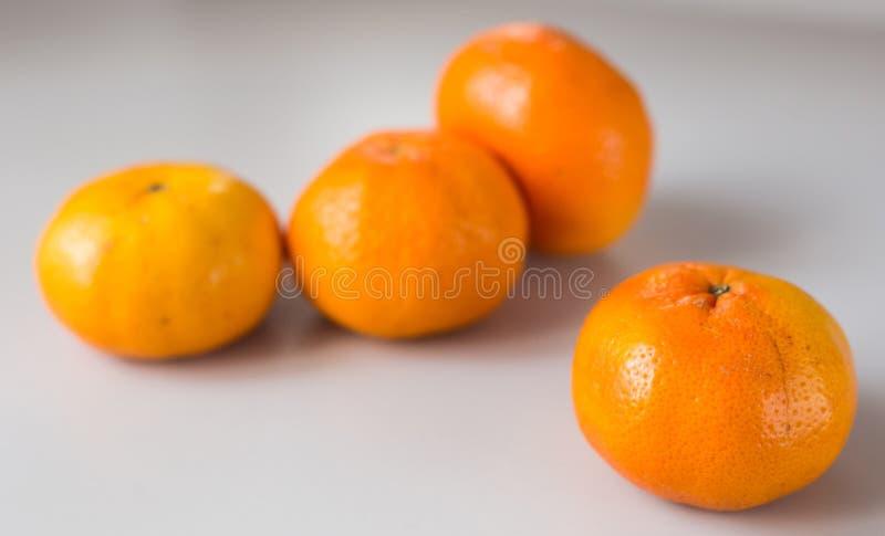 Fresh tangerines on white background royalty free stock images