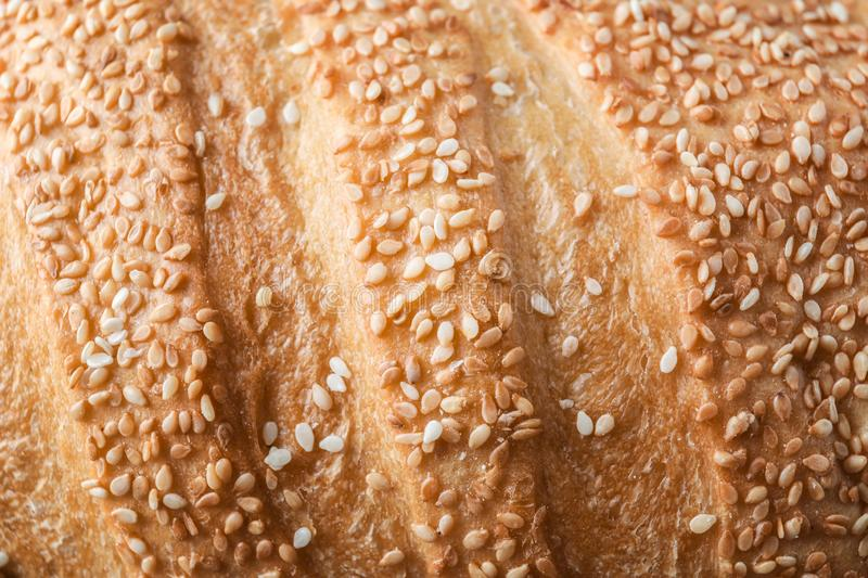 Fresh tasty bread with sesame seeds, closeup stock photography