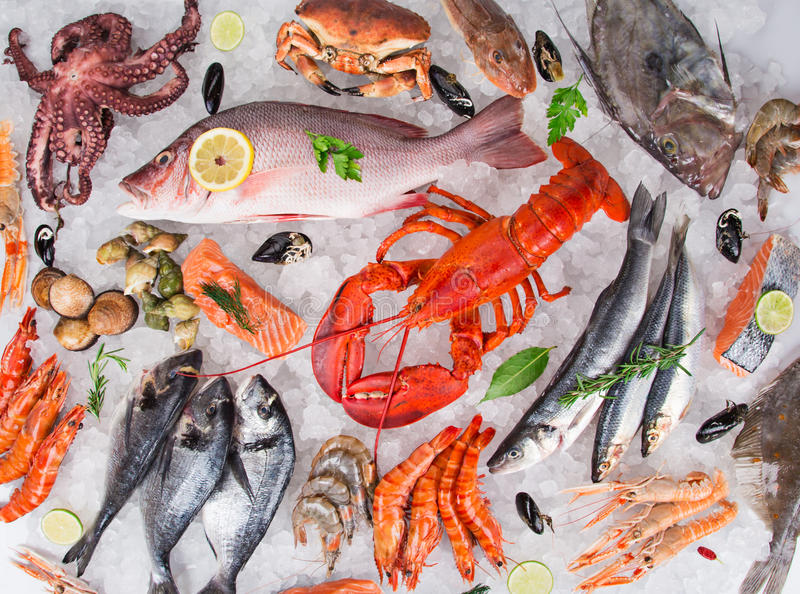 Fresh tasty seafood served on crushed ice. Top view. Close-up stock photo