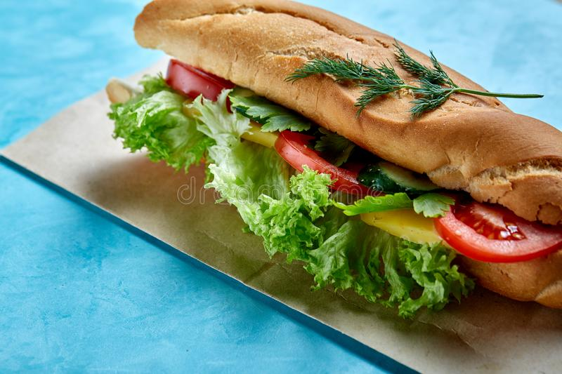 Fresh and tasty sandwich with cheese and vegetables on paper plate over blue background, selective focus, top view stock images