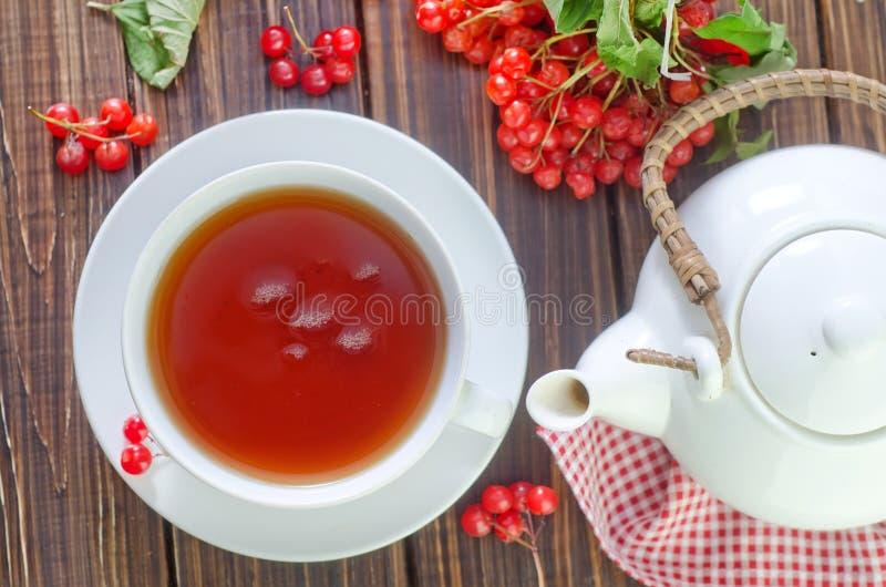 Fresh tea royalty free stock photos