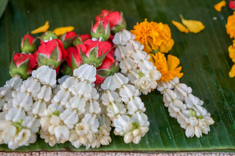 Fresh Thai style flower garlands made of white jasmine, crown flower, red rose and yellow marigold selling on green banana leaves stock images