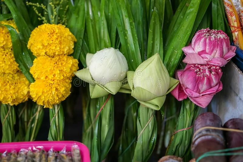 Fresh Thai style temple offering flower sets made of white and pink lotus flower, yellow marigold with green pandan leaves stock photos
