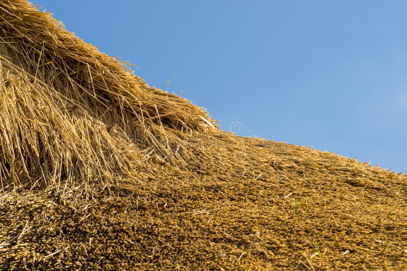 Fresh Thatch Roof. Closeup detail of a freshly thatched roof using professional thatch materials stock images