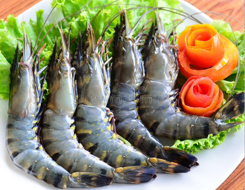 Fresh tiger shrimps. On a white plate royalty free stock photos