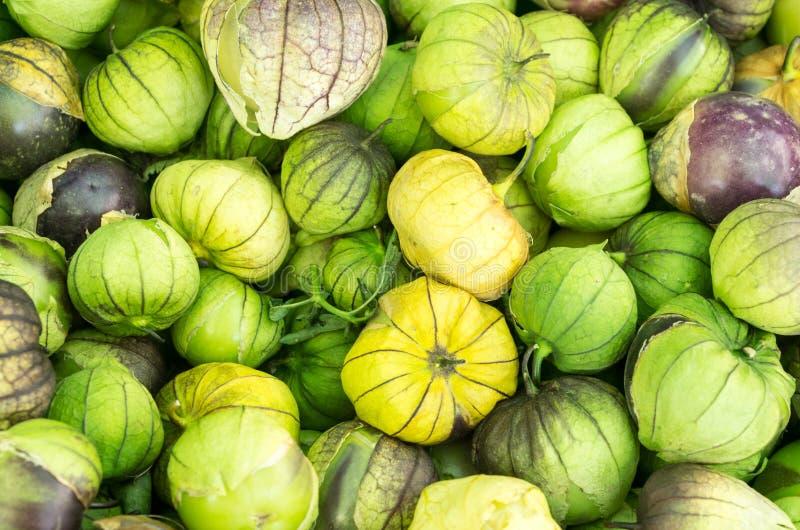 Fresh tomatillos at the market stock photo