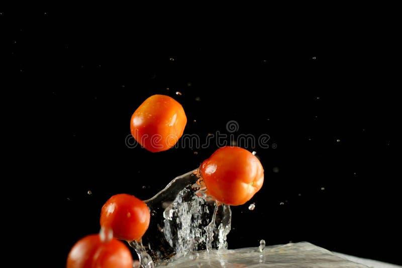 Fresh tomato dropped into water, royalty free stock photos