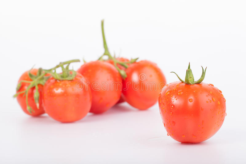 Download Fresh tomato stock photo. Image of vegetable, food, clean - 37938020