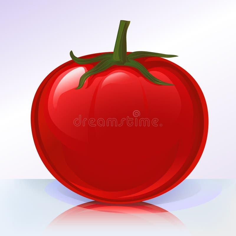 Fresh tomato on reflecting sur stock image