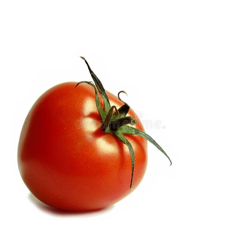 Free Fresh Tomatoe Royalty Free Stock Photo - 4989975