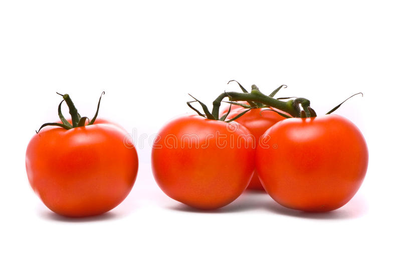 Fresh tomatoes. royalty free stock photo