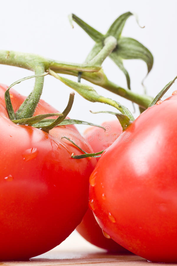 Free Fresh Tomatoes Stock Photo - 14122630