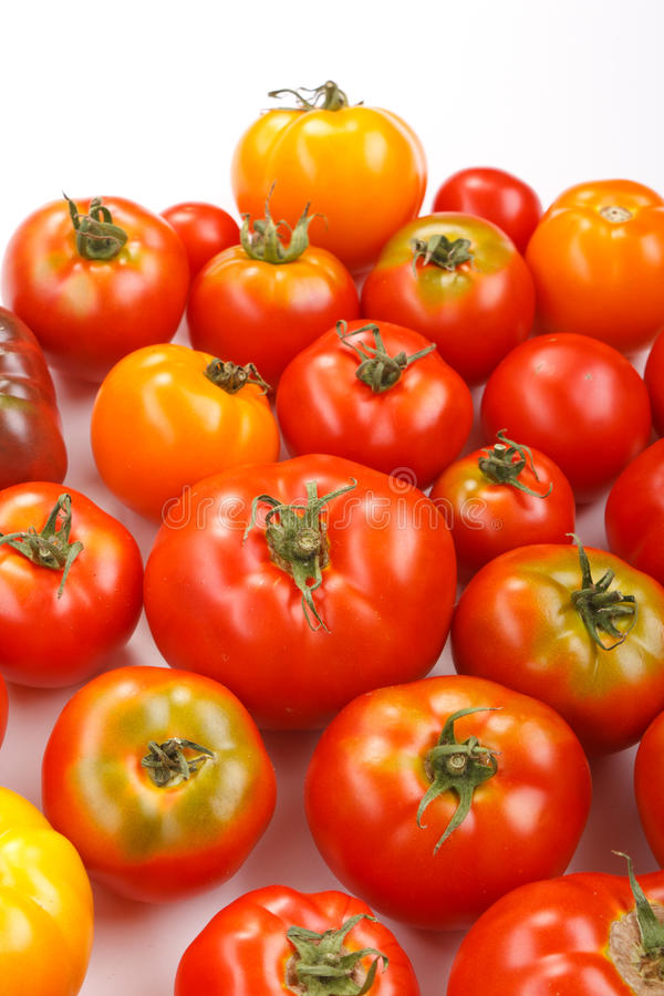 Fresh tomatoes. On the white stock images