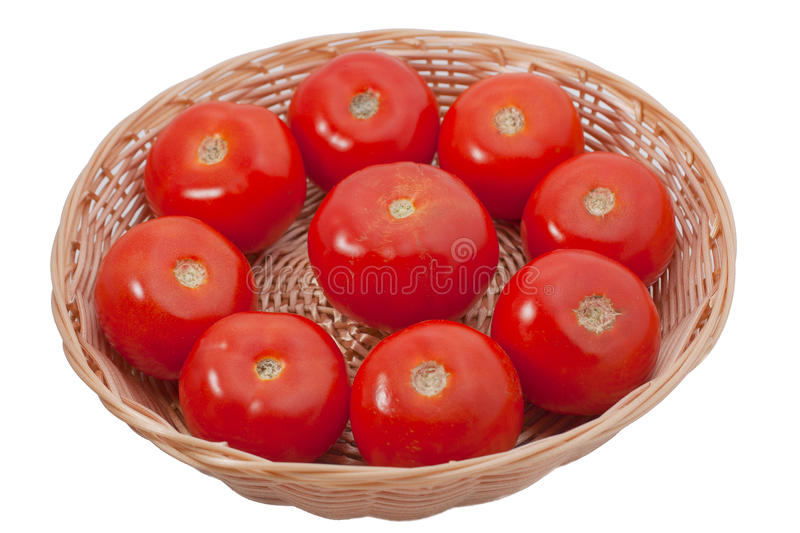 Download Fresh tomatoes stock photo. Image of delicious, organic - 23546432