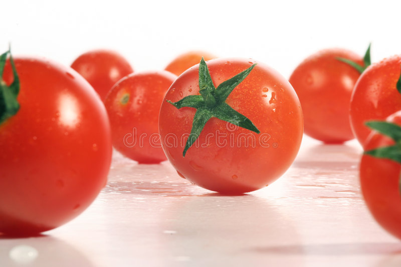 Download Fresh tomatoes stock photo. Image of gourmet, ingredient - 503144