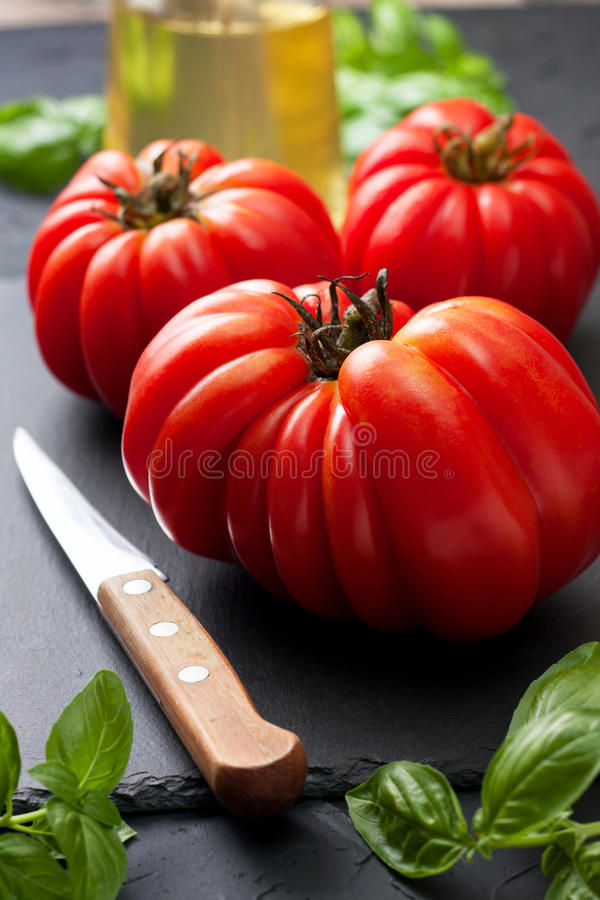Download Fresh tomatoes and basil stock photo. Image of herb, fresh - 83703208