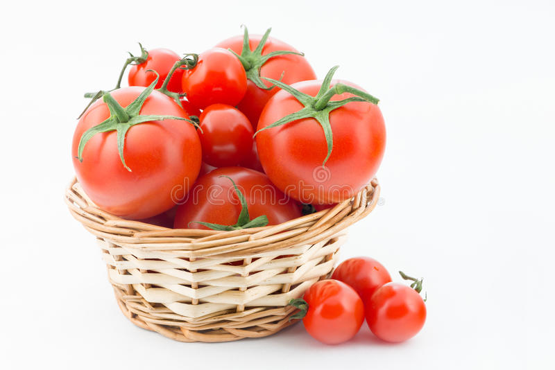 Download Fresh tomatoes stock photo. Image of group, isolated - 32123980