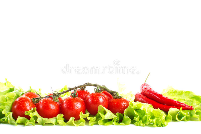 Fresh tomatoes with hot peppers royalty free stock photos
