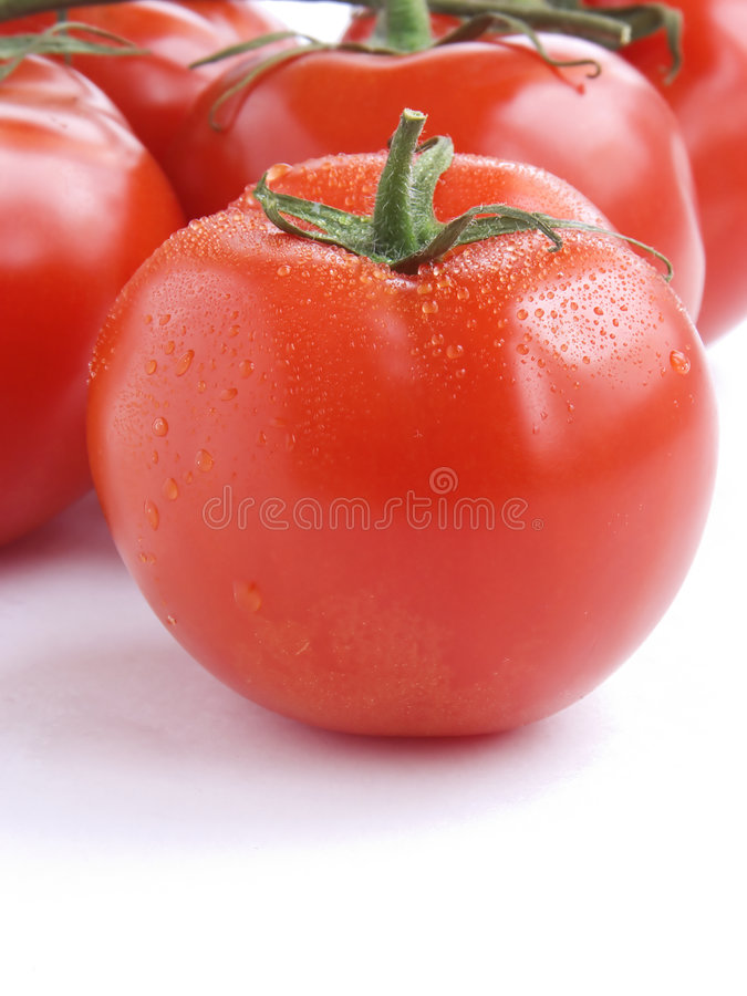 Download Fresh tomatoes III stock photo. Image of farm, products - 876868