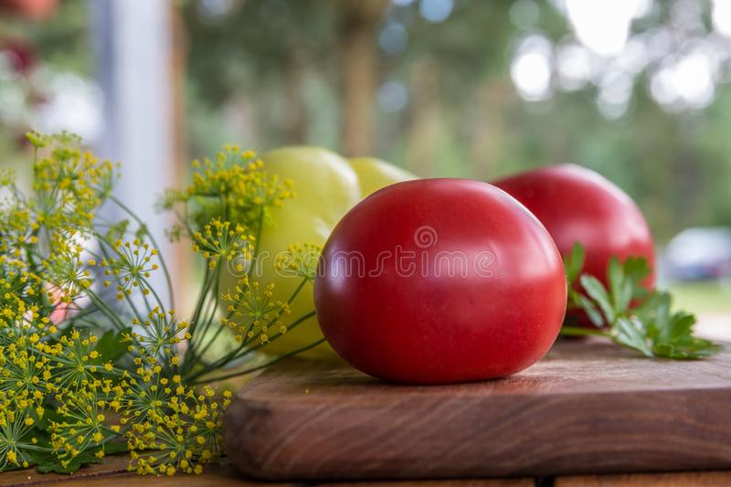 Fresh tomatoes, peppers, close-up with fennel and greens on a wooden board. Fresh vegetables. stock photo