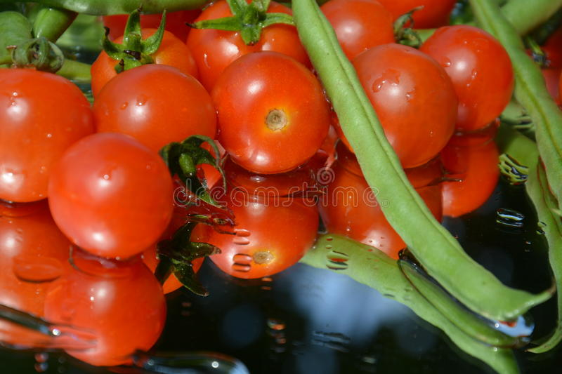 Fresh tomatoes and two peas stock image