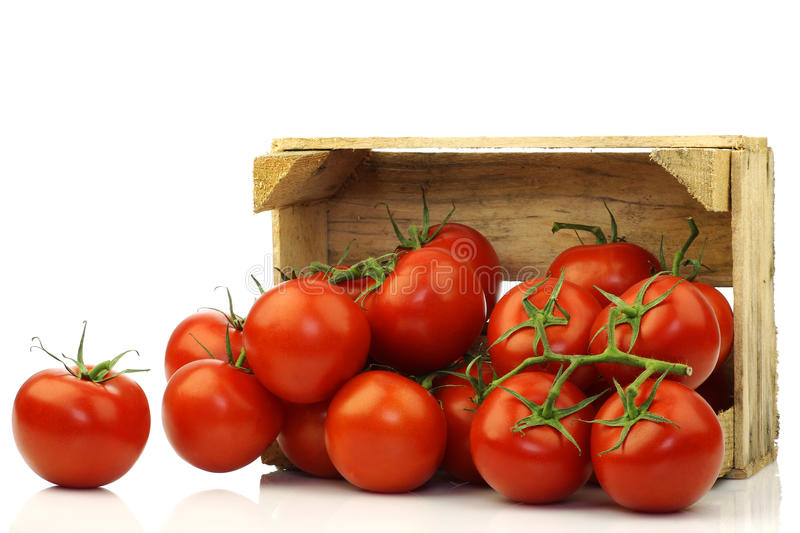 Fresh tomatoes on the vine in a wooden crate stock photo