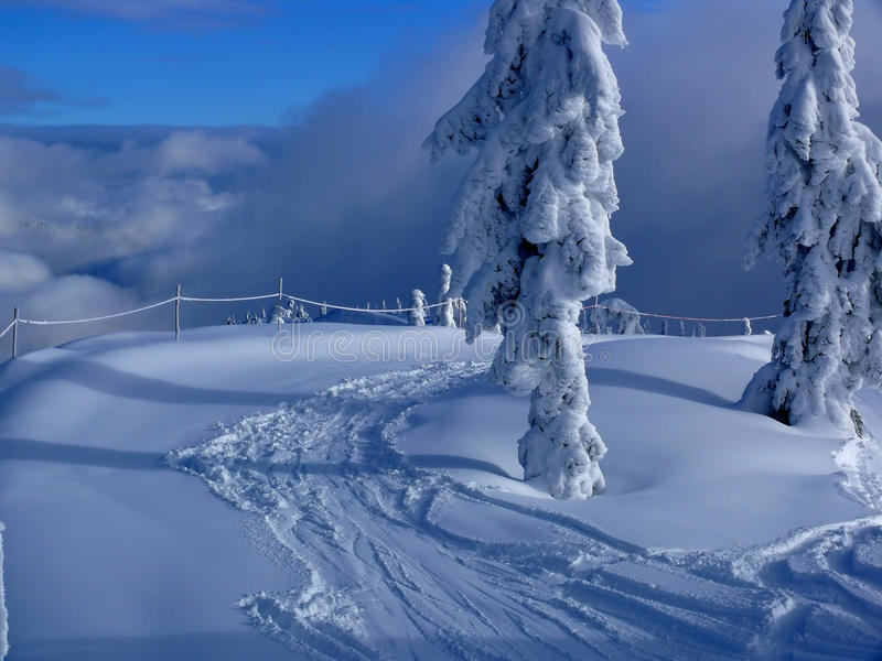 Download Fresh Tracks In The Snow Royalty Free Stock Photo - Image: 16587985