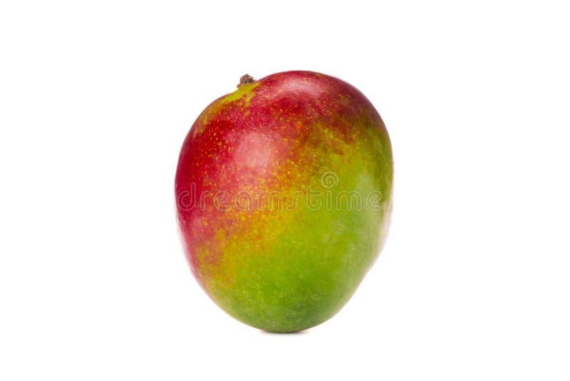 Fresh tropical mango isolated. On white background royalty free stock images