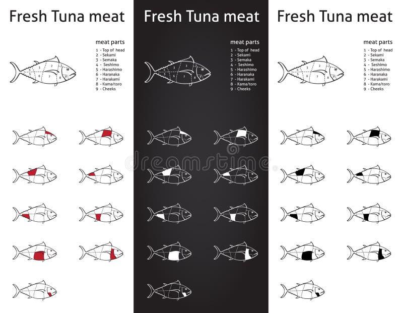 Fresh Tuna meat cuts set stock photos