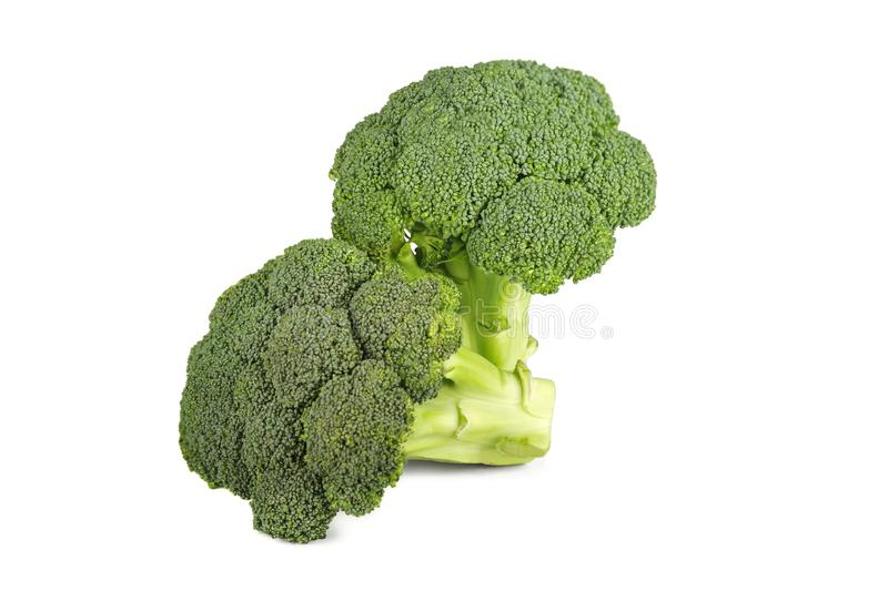 Fresh two green broccoli isolated on a white background royalty free stock images