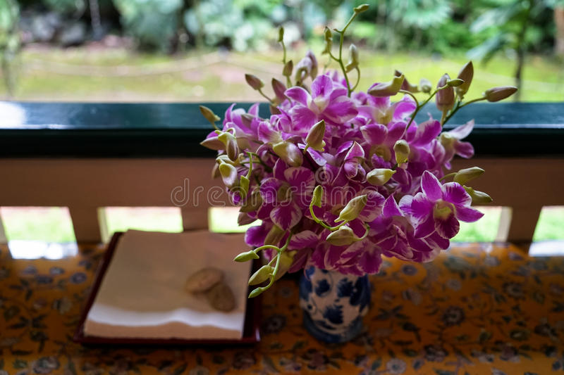 Fresh two-tone color, purple and white, budding and blooming orchid flower arrangement in ceramic vase royalty free stock photos