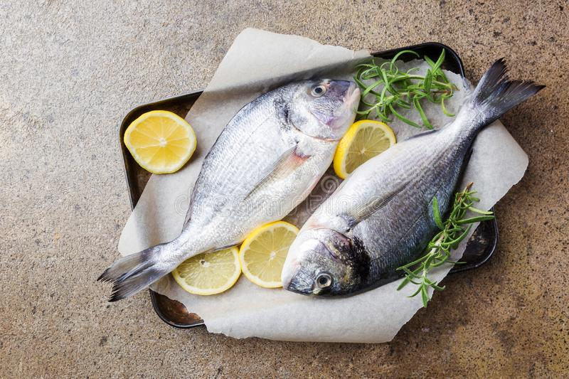 Fresh uncooked dorado. Or sea bream fish with ingredients, lemon and rosemary on paper over background, top view stock photography