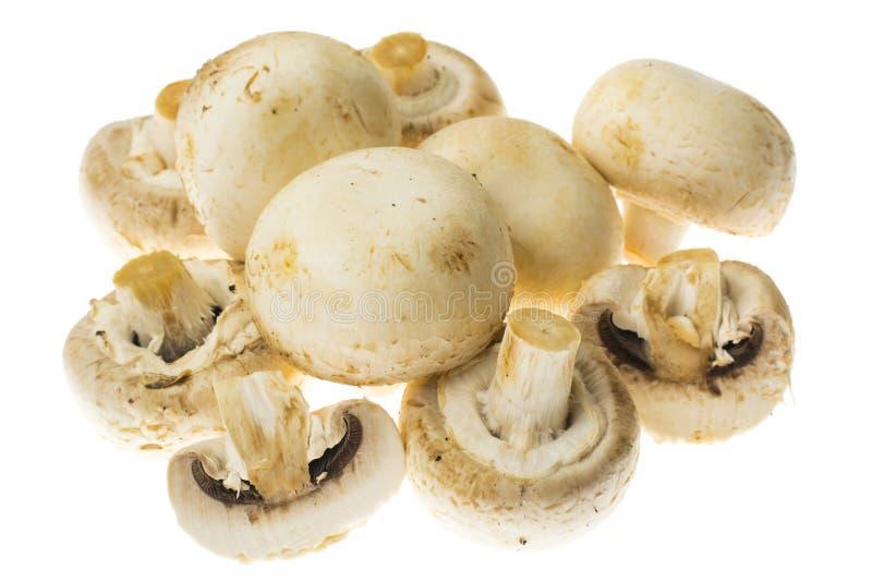 Fresh unwashed champignons on white background. Studio Photo royalty free stock photo