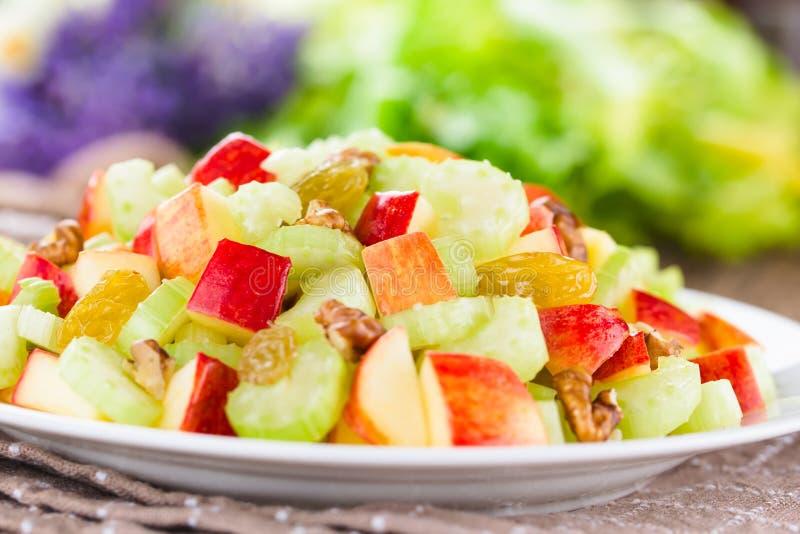 Fresh Vegan Waldorf Salad stock images