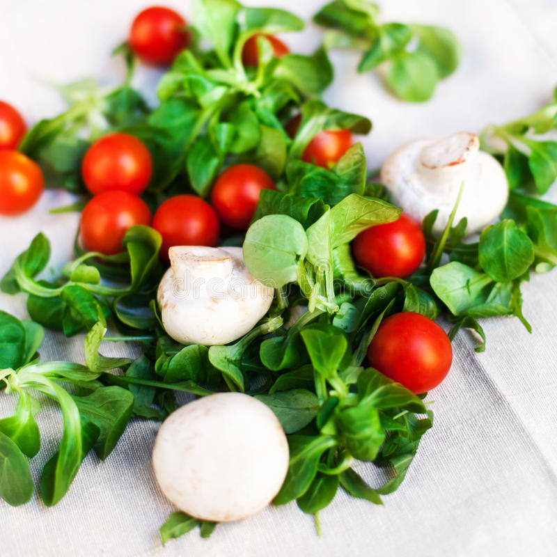 Fresh Vegetable Ingredients for the salad / oil, cherry tomatoes stock photography