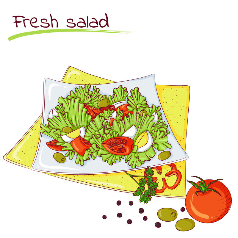 Fresh vegetable salad. Vector illustration of fresh salad isolated on white background. Food Icon. Design for cookbook, restaurant business. Series of food royalty free illustration