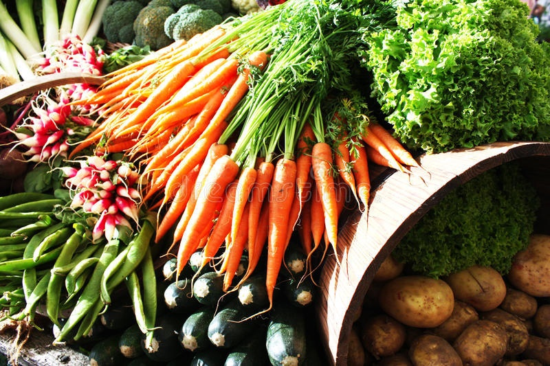 Download Fresh vegetables stock image. Image of season, diet, gardening - 14382655