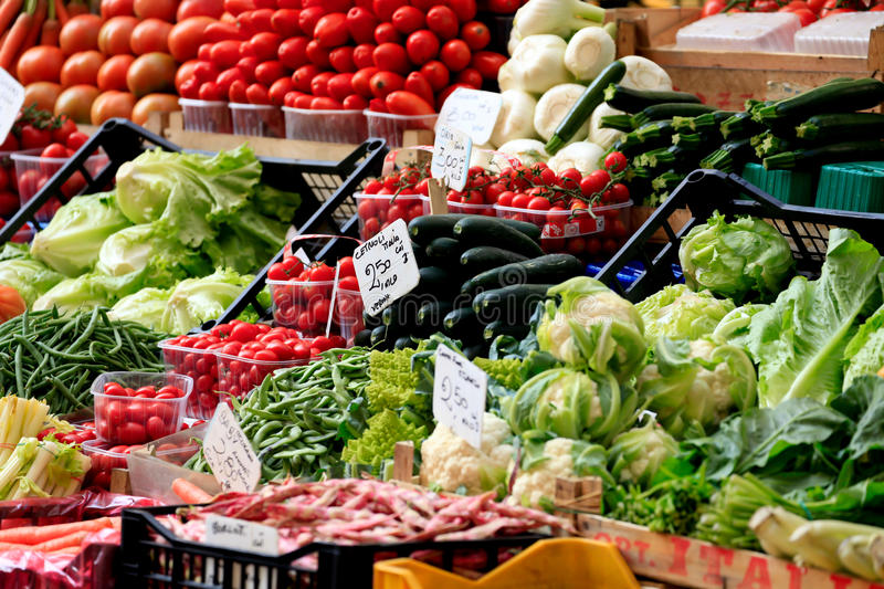 Download Fresh Vegetables stock photo. Image of fresh, lettuce - 22388682