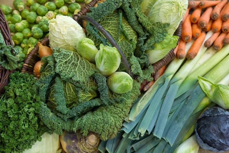 Fresh vegetables. A Photo of Fresh vegetables royalty free stock photos