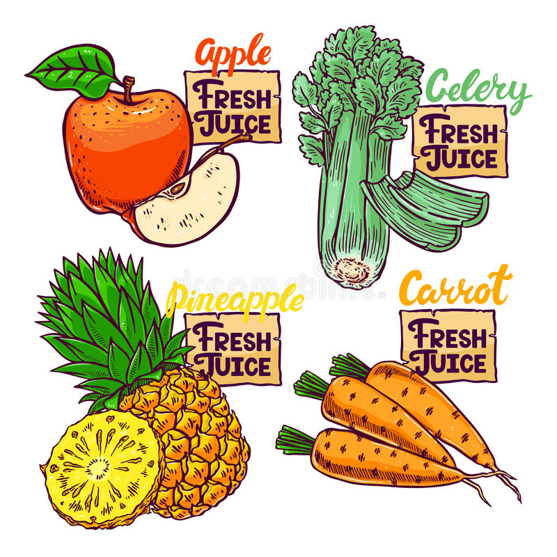 Fresh vegetables and fruits. Fresh Juice. beautiful set of vegetables and fruits vector illustration