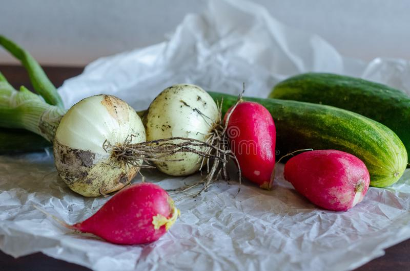 Closeup of freshly harvested vegetables royalty free stock photography