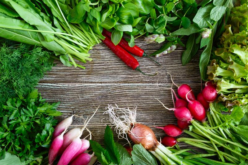 Fresh vegetables and greens. Harvest from the garden. Useful products on a wooden table stock images