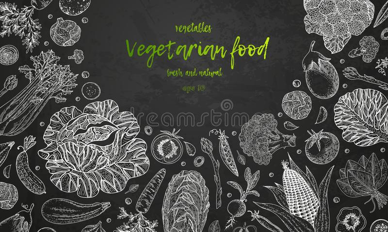 Fresh vegetables. Hand drawn illustration frame with vegetables. Farm market product. Great healthy food design template royalty free illustration
