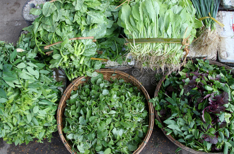 Fresh Vegetables And Herbs Royalty Free Stock Photo