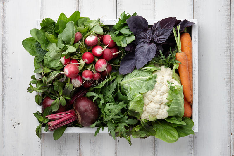 Fresh vegetables and herbs in wooden box stock image