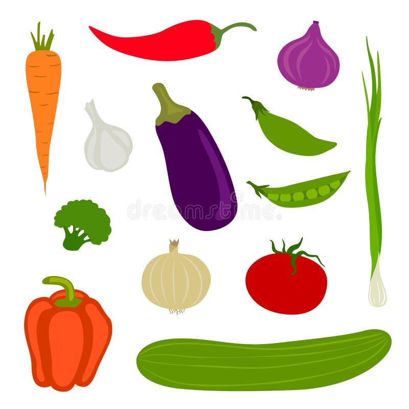 Fresh Vegetables. Illustration of different isolated fresh Vegetables stock illustration
