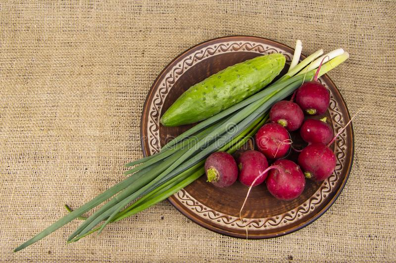 Fresh vegetables on a plate - radishes, onions, cucumbers stock image
