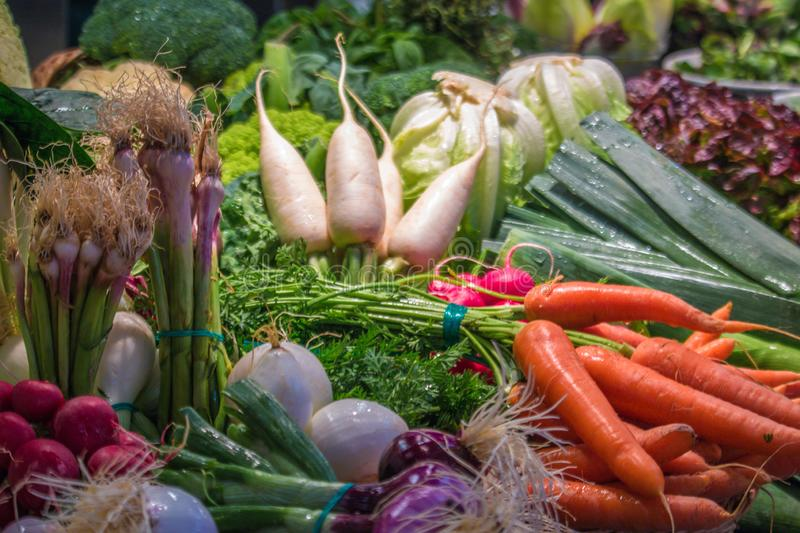 Fresh vegetables from the garden royalty free stock photo