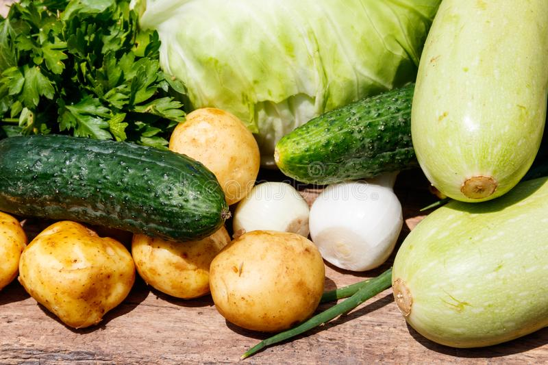 Fresh vegetables on rustic wooden table outdoor. Cabbage, cucumbers, parsley, new potatoes and onion on wood table on blurred background royalty free stock photo
